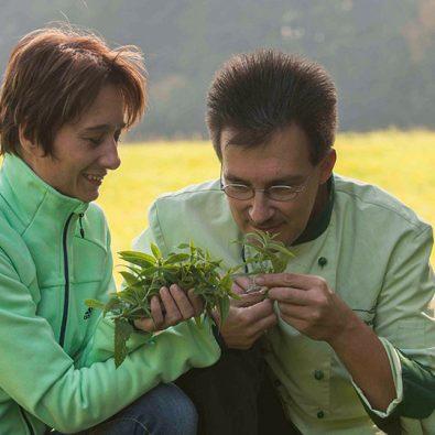 Das Ehepaar Schnupp beim Sammeln von Wildkräutern